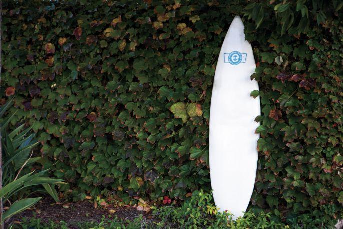 shrooms - Comment devenir un surfeur écolo ?