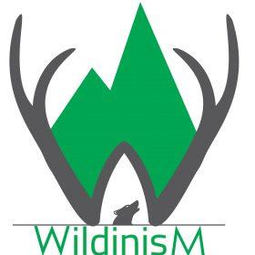 logo WildinisM